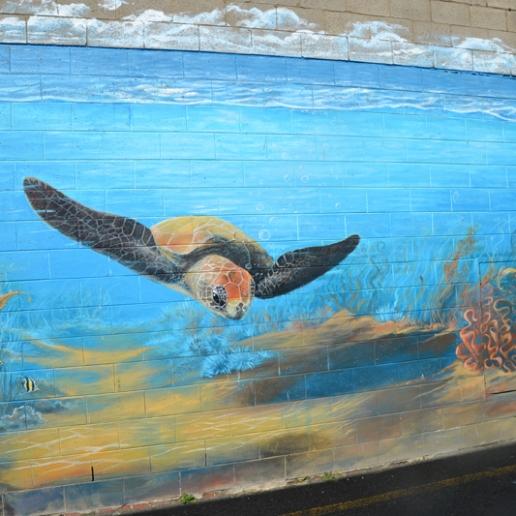 """Underwater Mural"""" by Brigitte Dawson and Melissa Turner, Thompson Lane"""