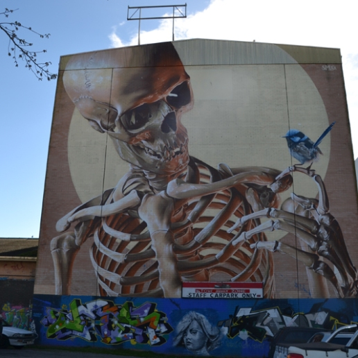 Street Art Festival, Frankston, Victoria