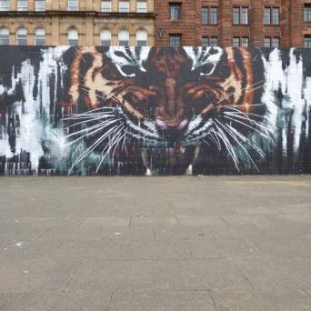 Glasgow's Tiger