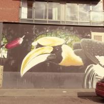 Big Birds, Howard and Dunlop Street