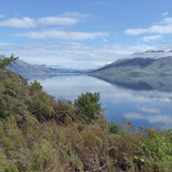 Lake Wanaka at the Neck