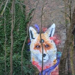 Fox in garden by Mark Worst
