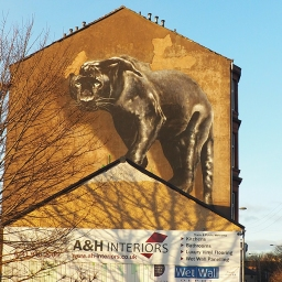 The Maryhill Panther