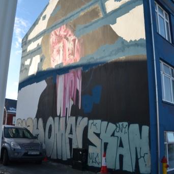 "Don John collaborated on his wall with Swedish musician Silvana Imam's ""Naturkraft""."