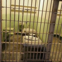 Alcatraz Island Basic cell