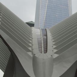 New York Occulus
