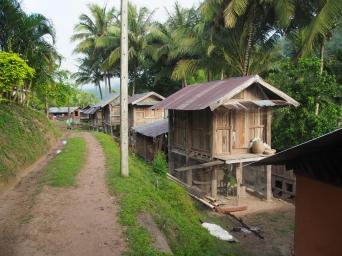 #2 Mekong River (25f)