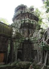 #3 Ta Prohm Temple AW (29)