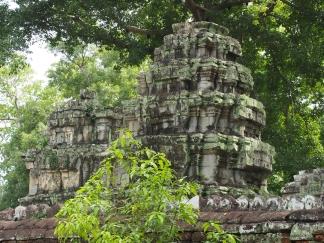 #3 Ta Prohm Temple AW (34)