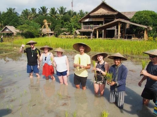 #4 Rice Dayjpg (12)