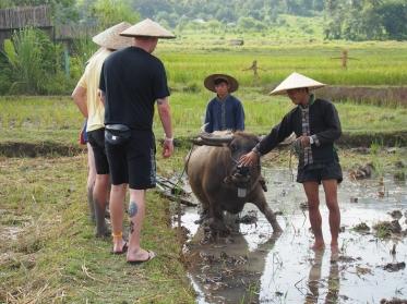 #4 Rice Dayjpg (8)