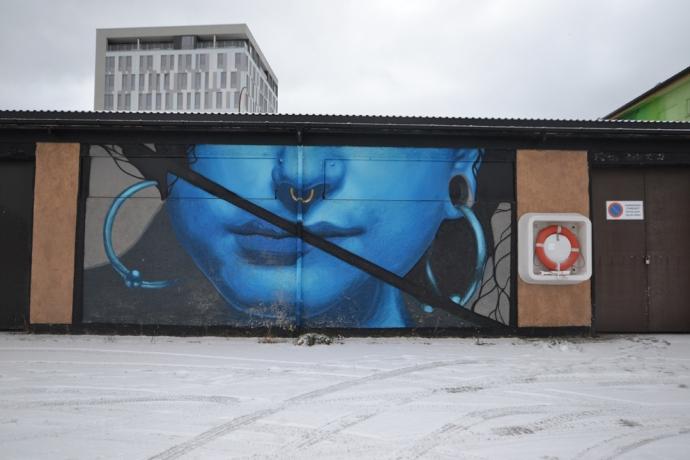 Day ^N 10 Sandnessjoen (20)