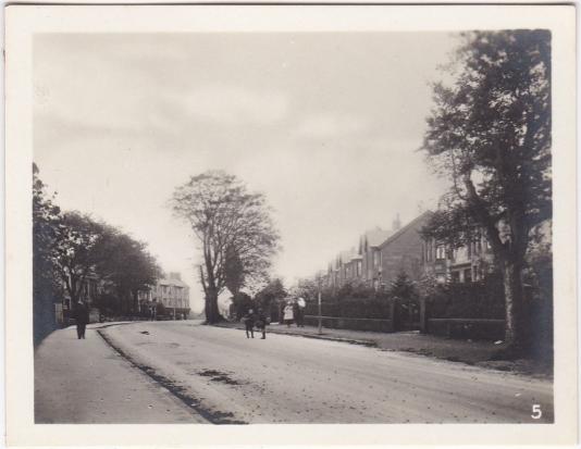 Eastwoodmains Road, Clarkston c1910